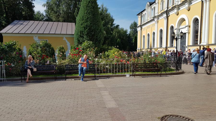 Цветочный пейзаж обители )