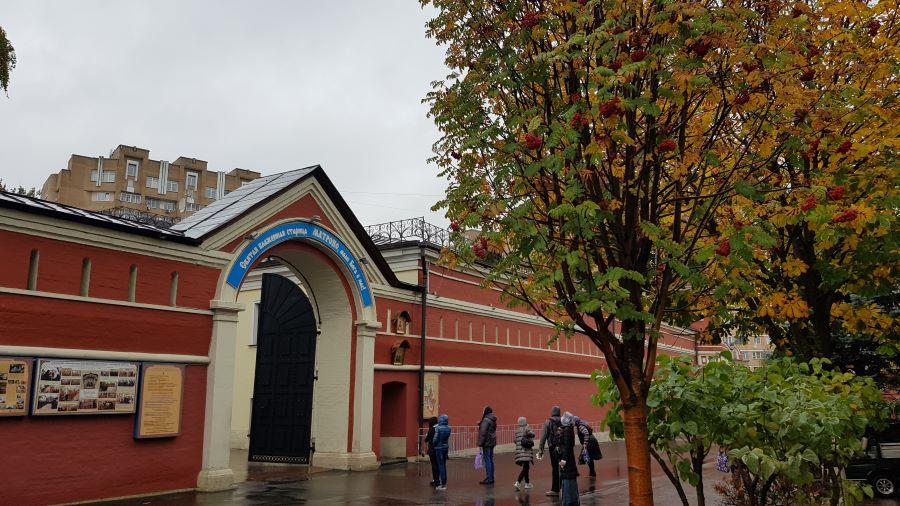 Рябина у входа в Покровский монастырь