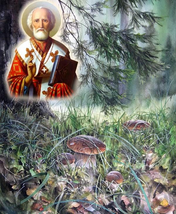 Лес. Грибы. Святитель Николай